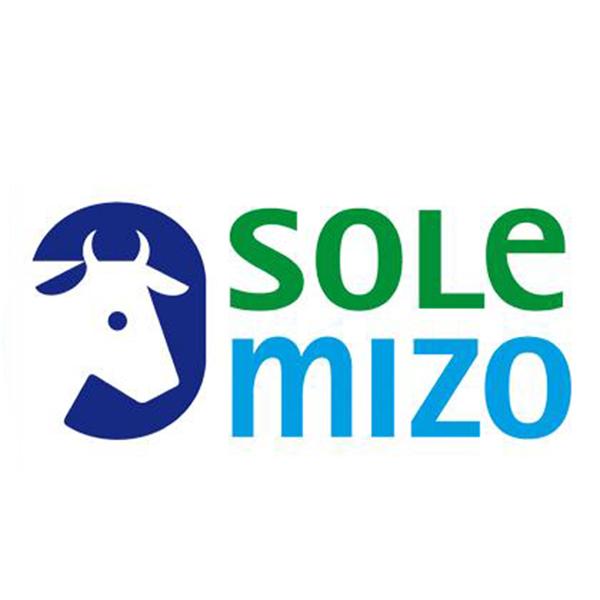3. Sole Mizo